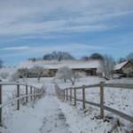 vinterhus-blå